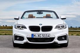 2017 BMW 2 serisi resim galerisi