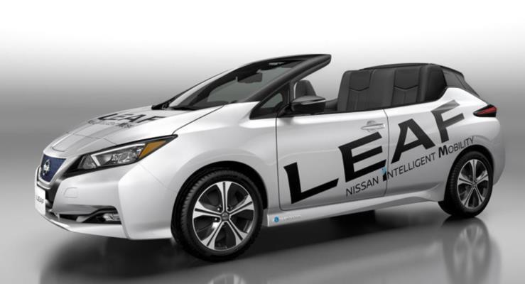 Nissan Leaf Open Air ortaya çıktı